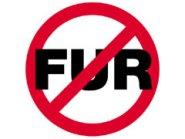 Image result for ban fur